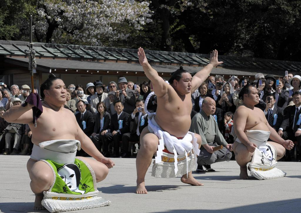 зале картинки сумо каратэ вам так кажется