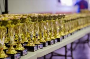 На Фестивале единоборств «Буду чемпионом!» в Петербурге будет разыграно более 350 комплектов медалей