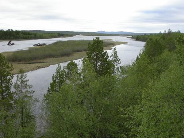 Экологи из России и Норвегии договорились о сотрудничестве