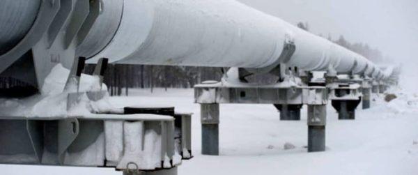 Немецкий НПЗ вновь приостановил импорт российской нефти из-за плохого качества нефти