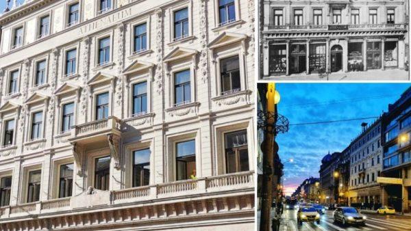 NETIZEN Budapest Centre — среди друзей в Европе